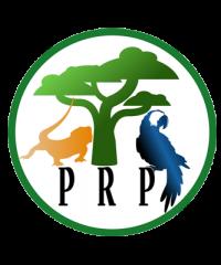 Pandemonium Rainforest Project